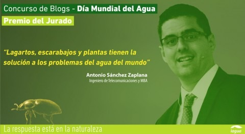 Antonio Sánchez Zaplana, Premio Jurado Concurso Blogs Día Mundial Agua