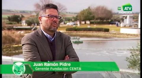 """CENTA programa Canal Sur TV """"Espacio Protegido"""""""