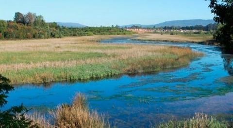 Chile emprende acciones proteger humedal Angachilla