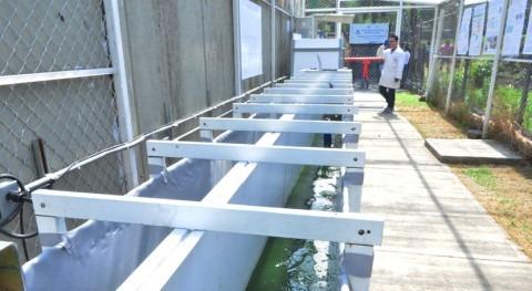 Inaugurada México planta tratamiento agua única mundo