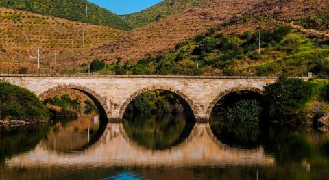 Licitada revisión umbrales aviso hidrológico red SAIH-ROEA CHD