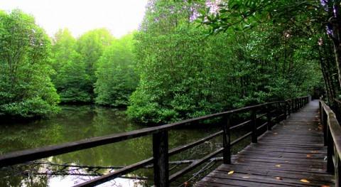área protegida Kota Kinabalu Wetland Malasia, designada como sitio Ramsar