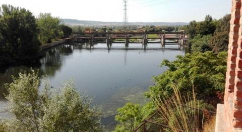 Autorizada contratación servicios zona regable Real Acequia Jarama