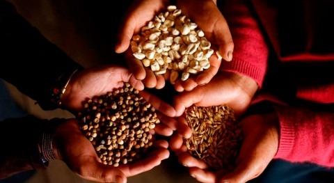 #RecetasdeCambio: Cocina sostenible cambio climático mano hermanos Roca