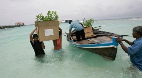 concentración dióxido carbono atmósfera alcanza niveles récord