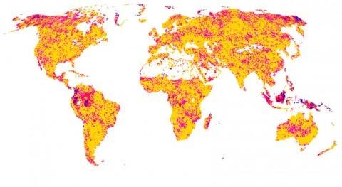 ecosistemas terrestres cada vez tardan más recuperarse sequía