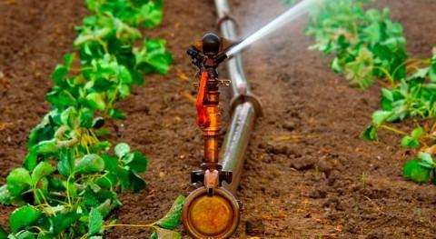 IIAMA desarrolla nueva técnica reducir tiempo limpieza redes riego presión