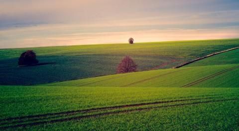 Respaldo europeo reutilización agua riego agrícola