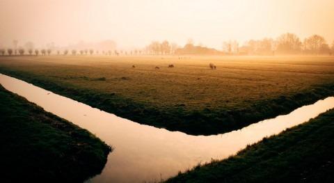 Extremadura apunta agricultura regadío como sector estratégico fijar población