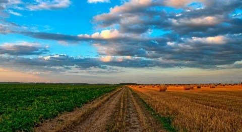 Extremadura avanza regadío Arroyo Campo y pide implicación agricultores