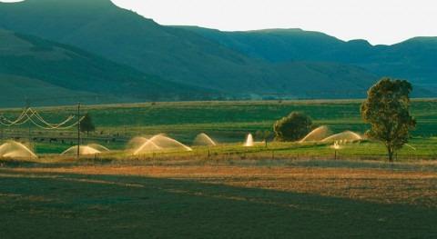 Reutilización agua riego agrícola: Consejo Europeo adopta nuevas normas