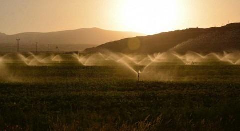 Expandir regadío podría alimentar otros 800 millones personas