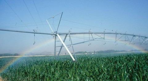 Autorizada transformación regadío sector II zona regable Centro Extremadura