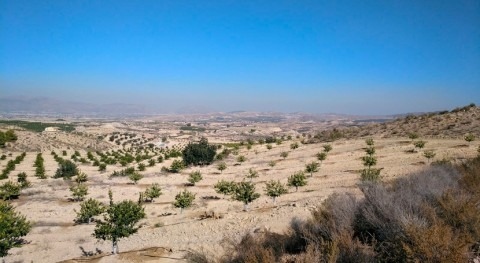 Ecologistas denuncia regadíos ZEPA Monte Valle y Sierras Altaona y Escalona