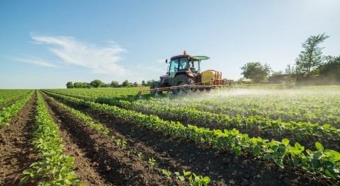 importancia regadío alimentar 265 millones personas amenazadas COVID-19