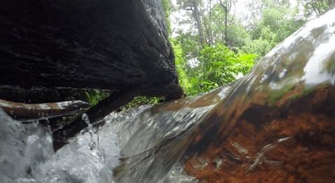 Comienza rehabilitación cuencas hídricas parte occidental Salvador