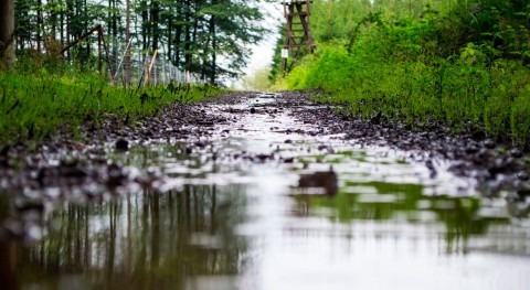 ¿Ha cambiado reparto estacional lluvia España?