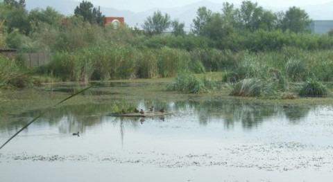 Andalucía inicia inclusión 83 humedales Inventario Español Zonas Húmedas