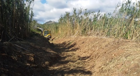 Comienza restauración barranco afluente arroyo Riudecanyes