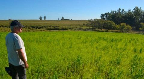 Uruguay presenta restauración ambiental cuenca río Santa Lucía