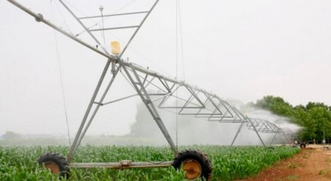 Fenacore: normativa reutilización aguas podría complicar exportación agroalimentaria