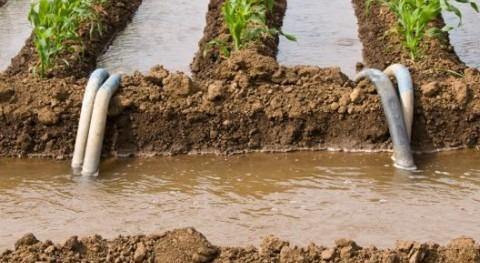 ONU publica 17 casos éxito uso aguas residuales agricultura
