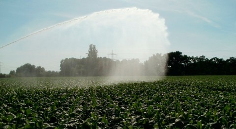 SUEZ Advanced Solutions Spain y Wise Irrisystem, epicentro negocios sector agrícola