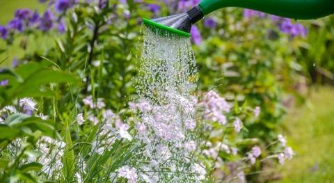 Evaluación económica uso agua riego jardines
