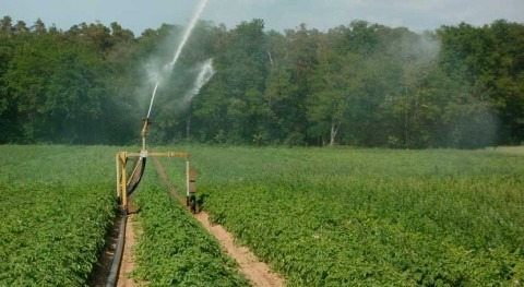 Vega Media se beneficiará más 1,4 hectómetros agua reutilizada cultivos