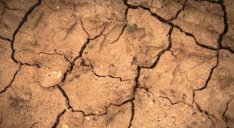 cuarta parte población mundial se enfrenta estrés hídrico extremo