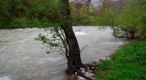 estado ríos, causante disminución poblaciones salmón y trucha