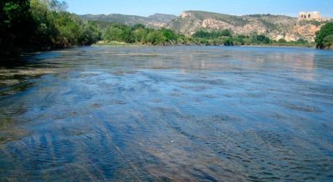 tratamiento aguas urbanas provoca cambios flora y fauna ríos