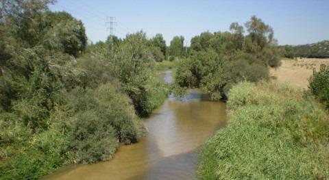 marcha plan choque atajar vertidos sólidos urbanos al cauce río Guadarrama