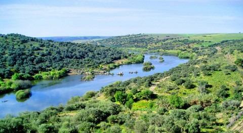 ¿Cuáles son afluentes río Guadiana?