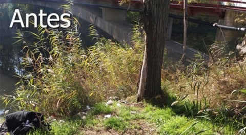 Comienza limpieza y mejora río Henares paso Alcalá