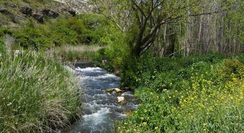 Chiloeches trabaja contener vertido tóxico evitar que llegue arroyo cercano