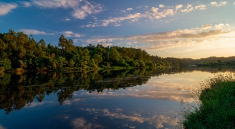 ¿Dónde nace y desemboca río Miño?