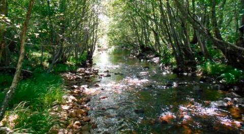 MITECO inicia trabajos recuperación y mejora reserva natural fluvial río Negro