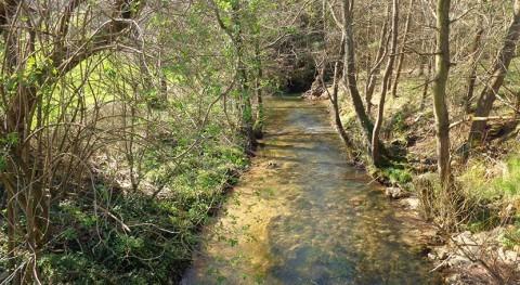 Asturias adjudica 61.000 euros redacción proyecto renovar colector río Nora