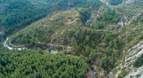 trabajos recuperación río Palancia devuelven agua al cauce cinco décadas seco