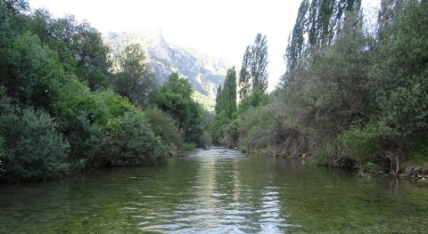 ¿Cuáles son afluentes río Segura?