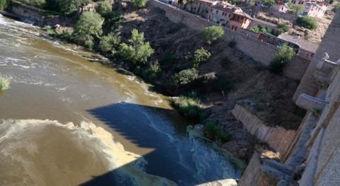 Castilla- Mancha denuncia que Tajo está muerto paso Toledo y Talavera