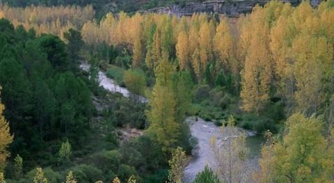 Autorizado trasvase 20 hectómetros cúbicos enero través acueducto Tajo-Segura