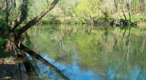 CHMS abre expediente sancionador Ponteareas vertidos al río Tea dessde EDAR