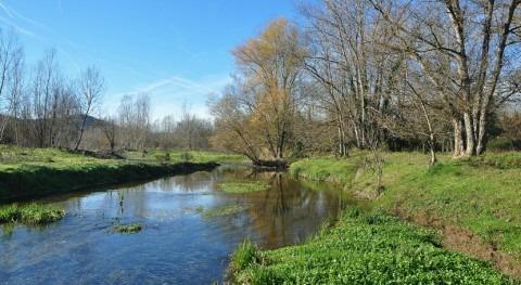 estudio analiza presencia contaminantes y calidad biológica ríos catalanes