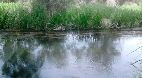 Ciclo Terrestre Agua