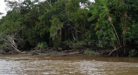 ¿Cuál es río más caudaloso mundo?
