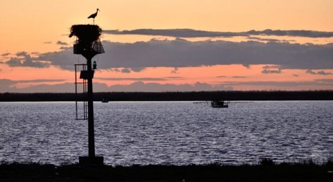 España se compromete UNESCO no autorizar dragado Guadalquivir