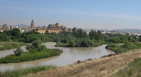 ¿Cuáles son afluentes río Guadalquivir?