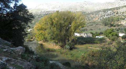 Autorizadas actuaciones saneamiento y depuración Cuenca río Guadiaro